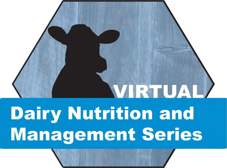 Virtual Dairy Nutrition and Management Series logo