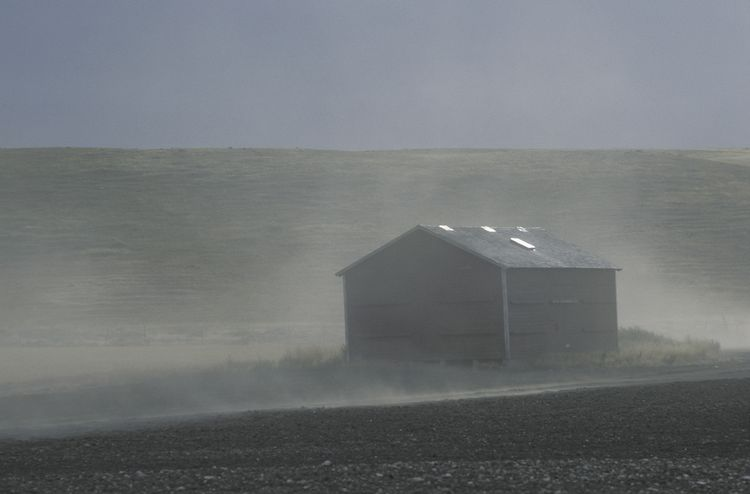 Agricultural settings have been shown to have high concentrations of particulate matter in the air, due to dusty conditions.
