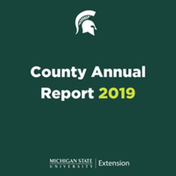 Picture of cover of Tuscola  County  2019 Annual Report