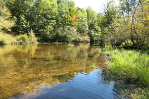 Scientists defend headwater protections