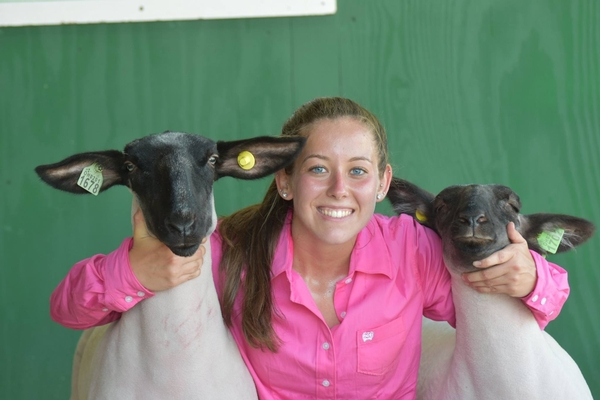 Samantha Beaudrie pauses for a photo opportunity with her lambs at the Monroe County Fair. Photo by Iris Rinaldi.