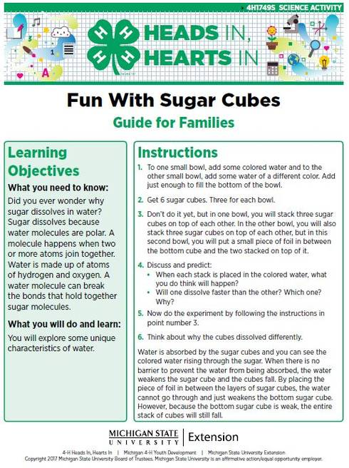Fun With Sugar Cubes cover page.