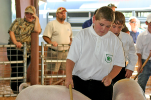 Surviving the county fair: Tips for parents to help make the most of positive learning opportunities