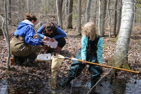 Collecting data at the vernal pool, Newaygo State Park. Photo by Tracy D'Augustino, MSU Extension.