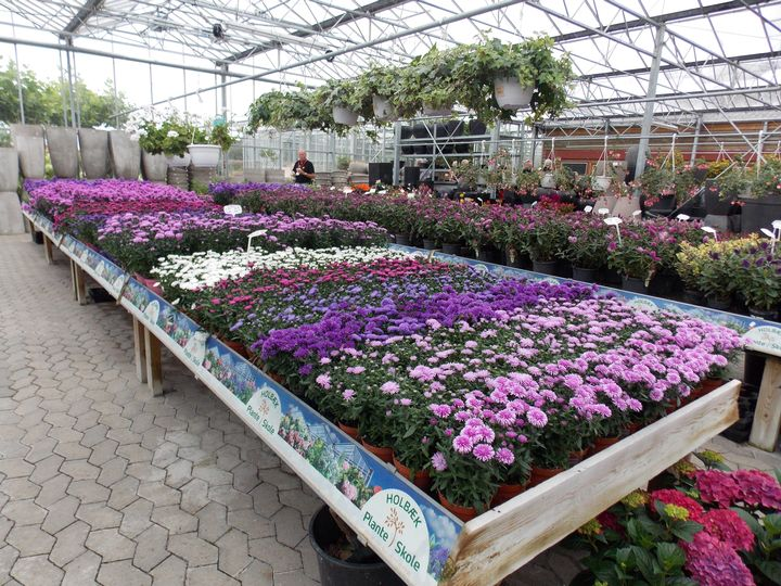 How The Metrics Of Us Garden Centers Compare With Those From