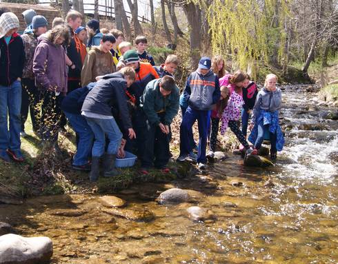 Sixth graders releasing their salmon fingerlings into the river at Harrisville Harbor. Photo by Les Thomas.