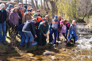 Alcona students make a splash releasing salmon in the Harrisville Harbor