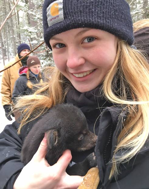 Hannah Peterson holding a bear cub during a den check for the DNR Predator–Prey Project. Photo by Jason Peterson.