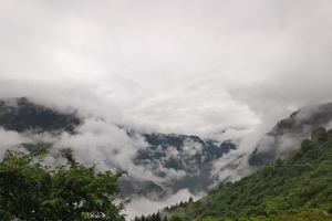 Wolong Nature Reserve alpine landscape