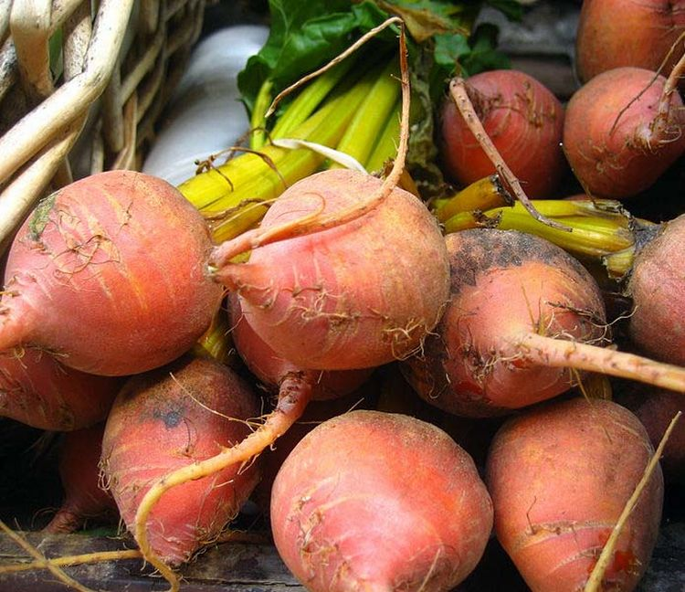 Beets. Photo credit: Jeremy Keith, Wikimedia Commons