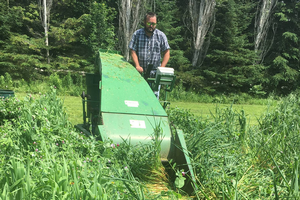 Pea and oat trial in Upper Peninsula completed — Part 2: Feed quality