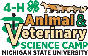 Build on science skills and have a blast at the Michigan 4-H Animal and Veterinary Science Camp!