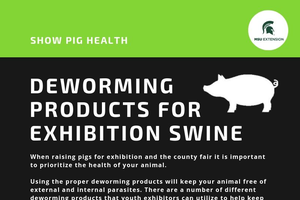 Youth exhibitors should consider deworming options for their show pigs: Deworming products for show pigs (Part 2)