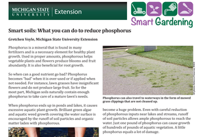 Smart soils: What you can do to reduce phosphorus