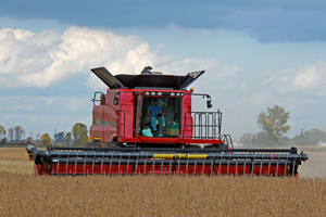 Consider harvesting soybeans early. Photo by Mike Staton, MSU Extension.