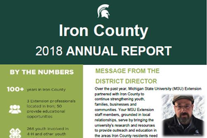 Iron County Annual Report: 2018