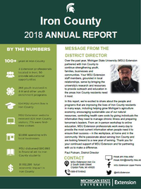 Iron County Annual Report 2018-19 cover.
