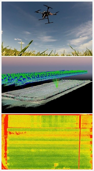 Drone data collection, data processing and data analysis.