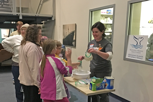 During the whale blubber activity, families learned about the Hawaiian Islands Humpback Whale National Marine Sanctuary.