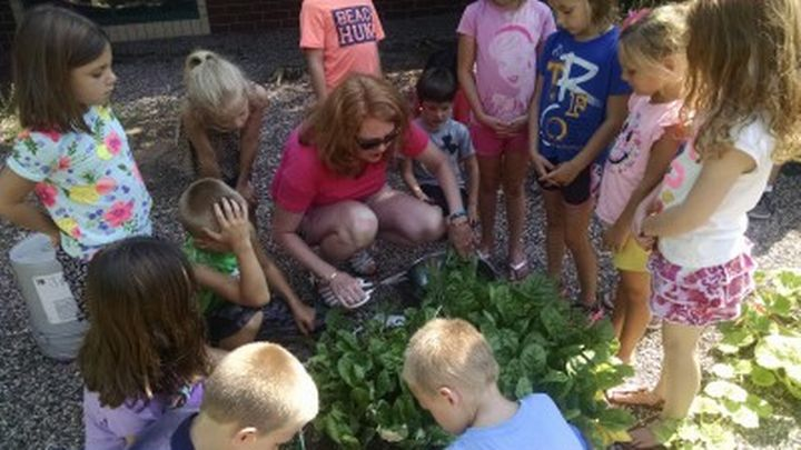 Elizabeth Slajus, Advanced Master Gardener, helps youth harvest the fresh greens they helped grow. | Photo by: Rebecca Krans, MSU Extension