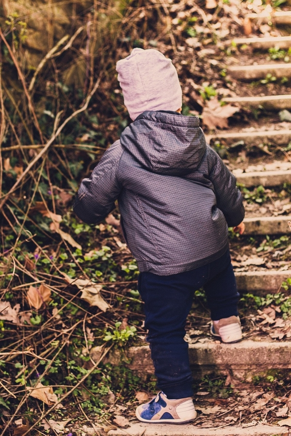 We teach math to toddlers when we count steps as they climb. Photo credit: Pixabay.
