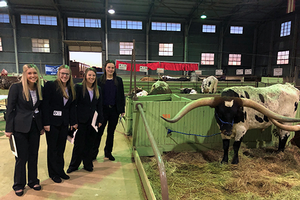 MSU dairy cattle judging team performs well in 1st contest of the season