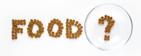 The word Food spelled out