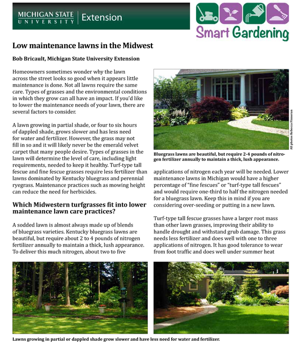 Low maintenance lawns in the Midwest - MSU Extension