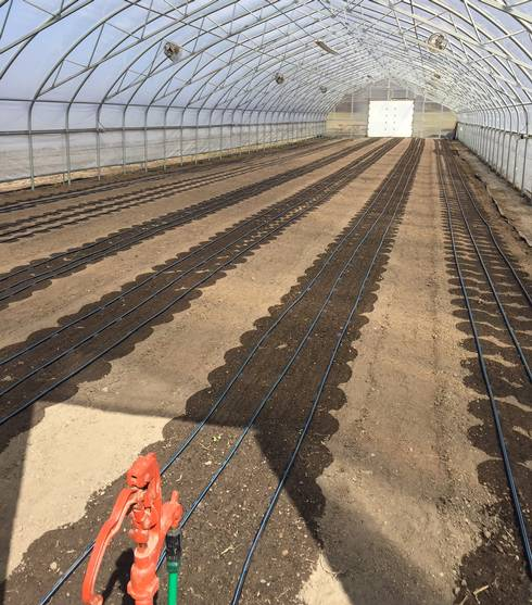 Newly seeded hoophouse at Drew Farms, Detroit Public Schools.