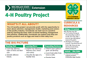 Michigan 4-H Cloverbud Snapshot Sheet: 4-H Poultry Project (4H1729)