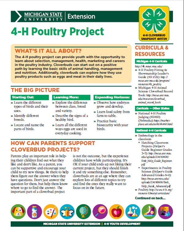 Michigan 4-H Cloverbud Snapshot Sheet: 4-H Poultry Project