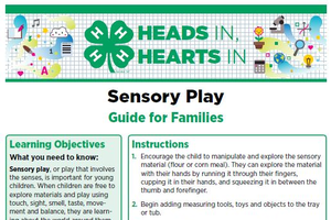 Sensory Play cover page.