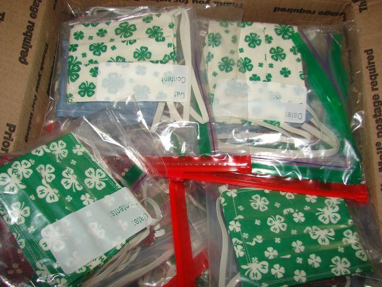 Packaged 4-H masks