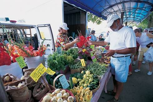 Michigan law requires local governments to provide for all lawful land uses where there is a demonstrated need. Is there any greater need than food? Photo Credit: Jim Sluyter, Michigan Land Use Institute l MSU Extension