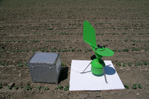 Spore trap in a young cucumber field