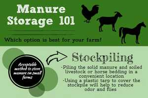 Storing manure on small farms – deciding on a storage option