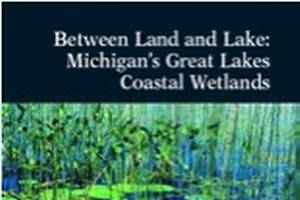 Between Land and Lake: Michigan's Great Lakes Coastal Wetlands (E2902)