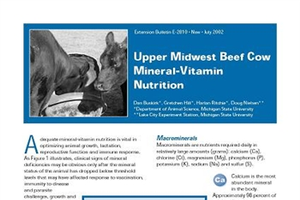 Upper Midwest Beef Cow Mineral-Vitamin Nutrition (E2810)