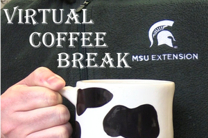 MSU Dairy Virtual Coffee Break: Improving the targeting of your antibiotics use