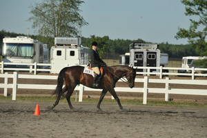 A rider and horse completing a pattern. Photo credit: Taylor Fabus