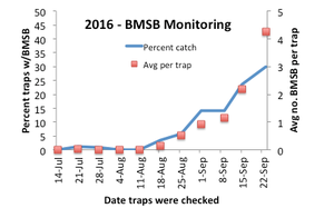 Nymphs and adults caught in baited traps at the edge of fruit and vegetable plantings and a few urban sites in the Lower Peninsula. Line indicates the percent traps that caught any BMSB; squares indicate average number captured per trap in a given week.