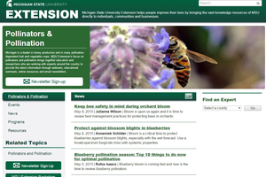 Pollination and pollinator information available through MSU Extension
