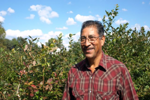 Pedro Bautista is a successful blueberry grower in Van Buren County. Photo courtesy of Patty Cantrell.