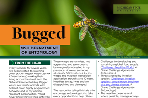 Bugged newsletter highlights Entomology's summer activities, news and honors