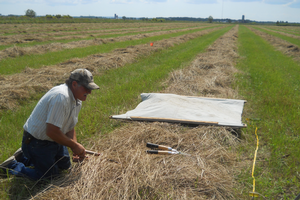 Three-year demonstration completed on hay fertility in Chippewa County