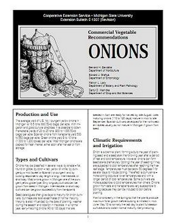 Onions: Commercial Vegetable Recommendations (E1307) - MSU Extension