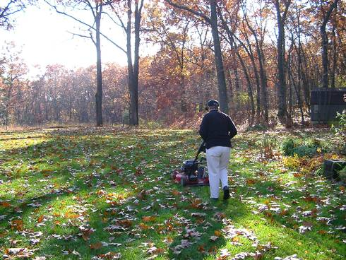 Mowing leaves
