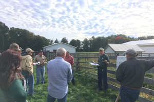MSU Extension to offer beginning grazing school in August