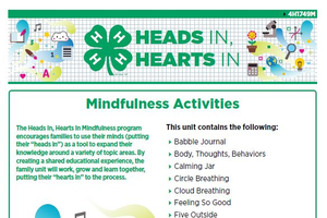 Heads In, Hearts In: Mindfulness Full Activity Book