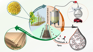 The illustration shows how lignin from corn stover is converted into biobased adhesives.